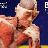 Body Kiállítás Budapest